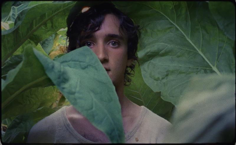 Kadr z filmu Lazzaro felice (Happy as Lazzaro) reż. Alice Rohrwacher