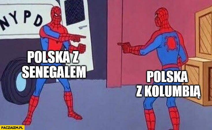 mem mundial polska reprezentacja styl gry