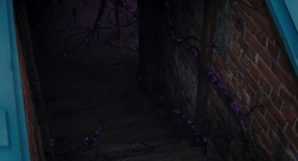 scena po napisach wandavision odc 7 pnącza piwnica harkness agnes